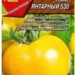 tomat-yantarnyi-530-niz-r-tsvp-_aelita_-01g-23982-B