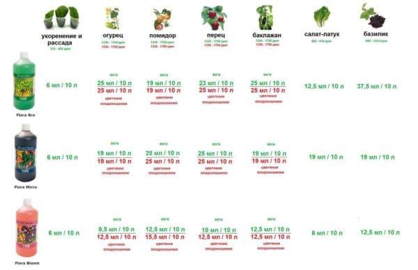 выращивание гидропоника